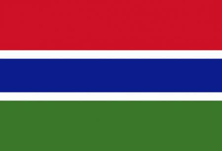 冈比亚商务签证[北京送签]·材料减免+拒签全退+全国受理+顺丰包回邮